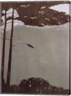 Canopy Fine-Art Print