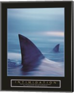 Intimidation - Sharks Fine-Art Print
