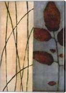 Quiet Leaves Fine-Art Print