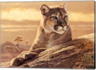 Desert Sunrise Fine-Art Print