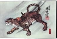 Tiger - dark Fine-Art Print
