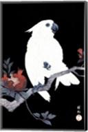 Ukiyo-E Parrot Fine-Art Print