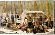 American Forest Scenes Fine-Art Print