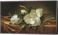 Magnolias on Gold Velvet Cloth Fine-Art Print