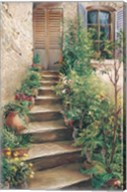 Stairway in Provence Fine-Art Print