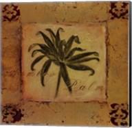 Bamboo Palm Fine-Art Print