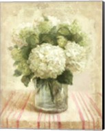 Cottage Hydrangeas in White Fine-Art Print