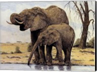 Elephants By The Waterhole Fine-Art Print