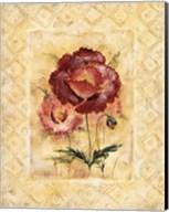 Classic Camellia Fine-Art Print