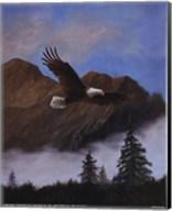 Eagle Soaring Fine-Art Print