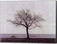 Bench: Bridgeport, CT Fine-Art Print