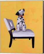 Riley The Dalmatian Puppy Fine-Art Print