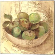 Sunlit Apples Fine-Art Print