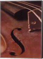 Violin IV Fine-Art Print