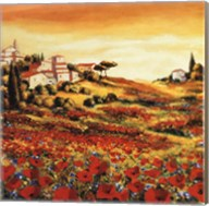Valley Of Poppies Fine-Art Print