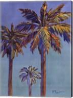 Santa Rita Palms II Fine-Art Print