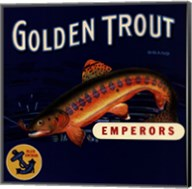 Golden Trout Fine-Art Print
