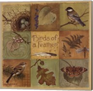 Birds of a Feather - square Fine-Art Print