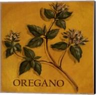 Oregano Fine-Art Print