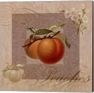 Fruits Blossoms II Fine-Art Print