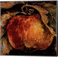 Red Apple Fine-Art Print