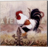 Paisley Rooster Fine-Art Print