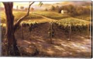 Willamette Gold Fine-Art Print