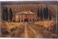 Toscana Vigna Fine-Art Print