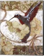Humming Bird II Fine-Art Print