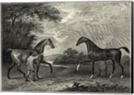 King Herod Flying Childers Fine-Art Print