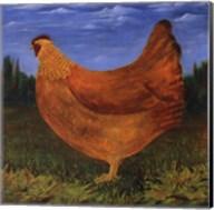 Country Chicken Fine-Art Print