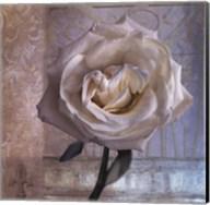 Modern Rose I Fine-Art Print