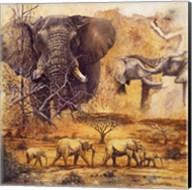 Safari II Fine-Art Print