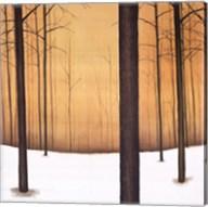 Golden Twilight Fine-Art Print