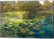 Waterlilies Fine-Art Print