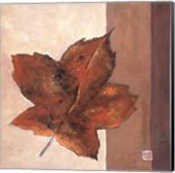 Leaf Impression - Rust Fine-Art Print