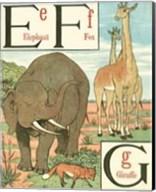Noah's Alphabet II Fine-Art Print