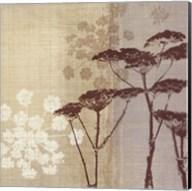 Lace II Fine-Art Print