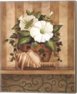 Petunia and Shell Fine-Art Print