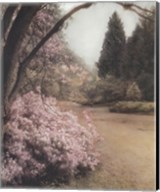 Azalea Way Fine-Art Print