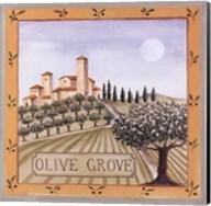 Olive Grove IV Fine-Art Print