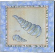 Bubble Bath Shells IV Fine-Art Print