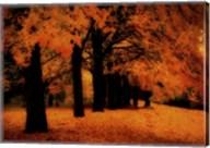 Gold Of Autumn East Fine-Art Print