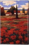 Castigliani II Fine-Art Print