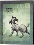 Fetch Fine-Art Print