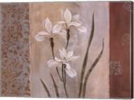 Iris in the Mist Fine-Art Print