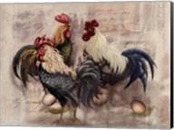 Rooster Trio Fine-Art Print