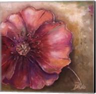 Pink Accent I Fine-Art Print