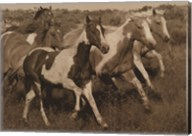 Horses Running II Fine-Art Print