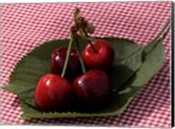 Morello Cherries I Fine-Art Print
